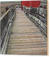 Old Red Shack At The End Of The Walkway Wood Print by Wingsdomain Art and Photography