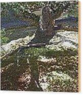 Old Tree II Wood Print