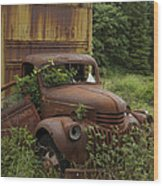 Old Truck In Rain Forest  Wood Print