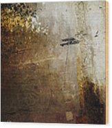 Old Walls Divide Wood Print