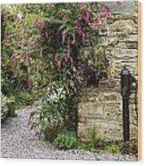 Old Water Pump, Ram House Garden, Co Wood Print