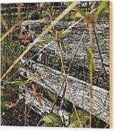 Old Weathered Gate Photoart II Wood Print