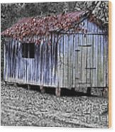 Old Weathered Shed Wood Print