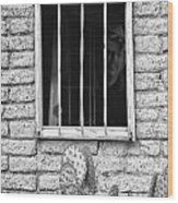Old Western Jailhouse Window In Black And White Wood Print