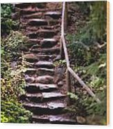 Old Wet Stone Steps Wood Print