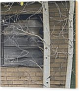 Old Window And Aspen Wood Print by James Steele