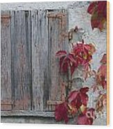 Old Window With Red Leaves Wood Print