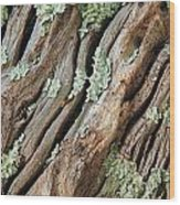 Old Wood And Lichen Wood Print