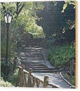 Oldbridge Steps Wood Print