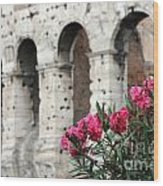 Oleander And Colosseum Wood Print