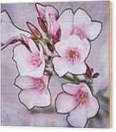 Oleander Blossoms Wood Print