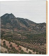 Olive Oil Mountain Wood Print
