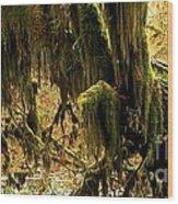 Olympic Moss Wood Print