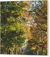 On A Country Road Wood Print