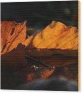 On Dark Seas Wood Print