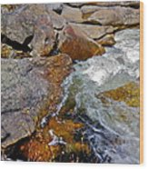 On Screw Auger Falls 6 Wood Print