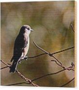On The Arbor Wood Print