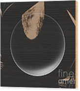 On The Dark Side Of The  Moon  Wood Print
