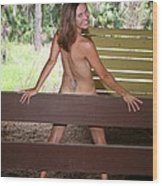 On The Fence 819 Wood Print