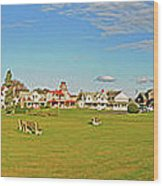 On The Green At Marthas Vineyard Wood Print