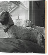 On The Lookout  Wood Print