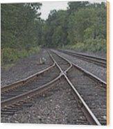 On The Rail Wood Print