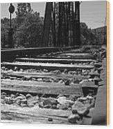 On The Rails Wood Print