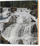 On The Rocks Glen Alpine Falls Wood Print