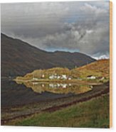 On The Shore Of Loch Duich Wood Print