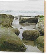 Ona Beach Wood Print