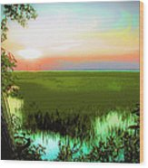 Once Upon A Time At Jekyll Island Wood Print