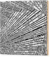 One 17 Wood Print