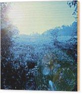 One Blue Morning Wood Print