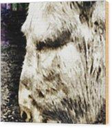 One Can't Complain Said Eeyore Wood Print