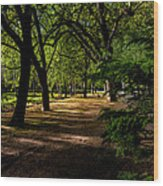 One Day In The City Park Wood Print