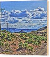 One Desert Drive Wood Print