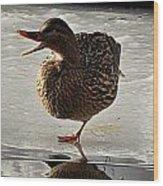 One-legged Duck Wood Print