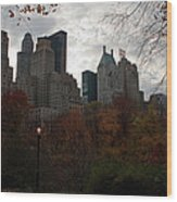 One Light On In Central Park Wood Print