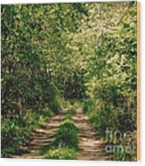 One Lonely Path Wood Print