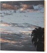 One Monsoon Morning  Wood Print