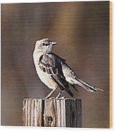 One On A 4x4 Wood Print