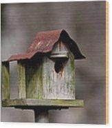 One Room Shack - Bird House Wood Print