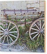 Only One Previous Owner Wood Print