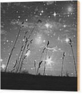 Only The Stars And Me Wood Print