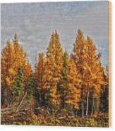 Onoway Wood Print