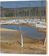 Opalescent Pool Of Yellowstone Wood Print