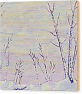 Opalescent Winter Wood Print by Sharon Gill