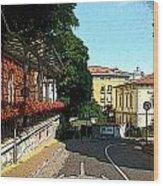 Opatija-2 Wood Print