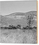 Open Hills Wood Print
