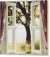 Open Window To Tree Wood Print